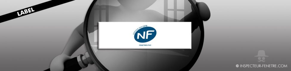 nf bleu logo rectangle blanc fenêtre