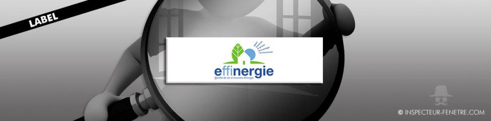 rectangle blanc logo bleu vert fenêtre